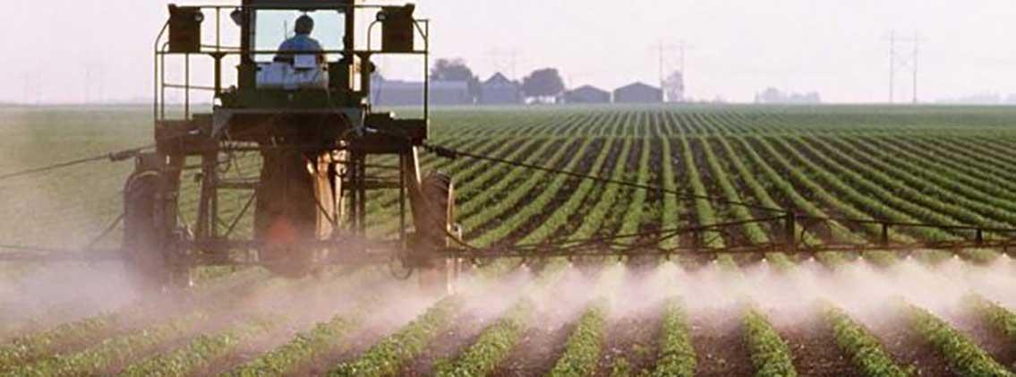 L'Algérie en mesure d'arrêter l'importation des produits agricoles d'ici trois ans
