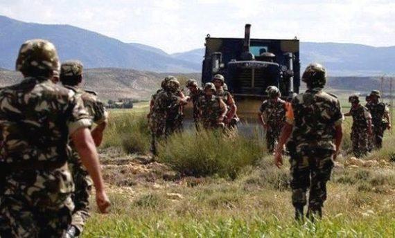 Deux éléments de soutien aux groupes terroristes ont été arrêtés samedi à Skikda et Chlef par des détachements combinés de l'Armée nationale populaire (ANP), indique dimanche un communiqué du ministère de la Défense nationale (MDN).