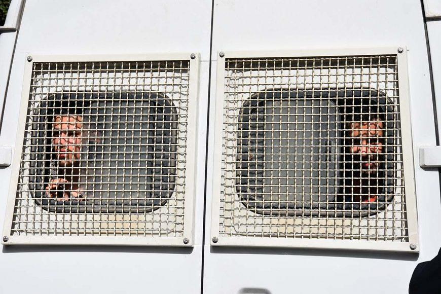 Deux jeunes manifestants embarqués dans le fourgon cellulaire de la police regardent par le grillage arrière du fourgon cellulaire. Malgré leur arrestations, ils gardent le sourire.