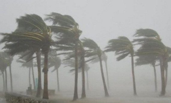 Des vents forts souffleront sur les wilayas de l'Est du pays, à partir de ce lundi jusqu'à mardi matin, selon un bulletin météorologique spécial (BMS) émis par les services de l'Office national de météorologie.