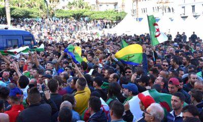 Emblème Amazigh