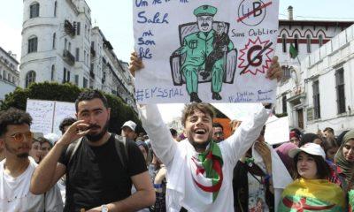© DR | Manifestation contre le système politique actuel à Alger