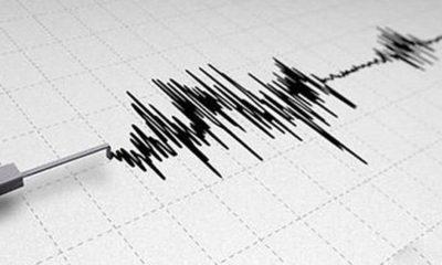 © DR | Secousse tellurique de magnitude 3,2 à Tipaza