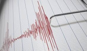 © DR | Graphique d'une secousse établi par le CRAAG
