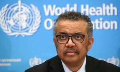 © DR | Tedros Adhanom Ghebreyesus, Directeur général de l'OMS