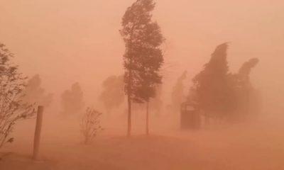 © DR | Vents de sable sud algérien