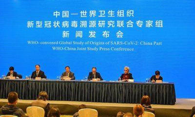 © DR |Les experts de l'OMS en Chine pour enquêter sur l'origine du covid-19