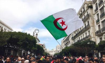 © Feriel Bouaziz pour INTERLIGNES | 106 manifestation du Hirak à Alger