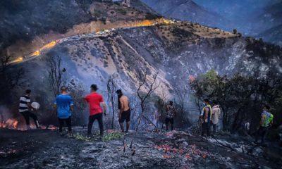© INTERLIGNES  des citoyens face au feux de forêts, 13 août 2021